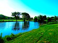 Willow Island at the Alliant Energy Center - panoramio.jpg
