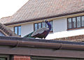 Wimborne peacock - geograph.org.uk - 1443101.jpg