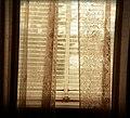 Window (49212286).jpeg
