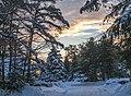 Winter Morning (11751674425).jpg