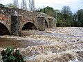 Winter floods at Bickleigh - geograph.org.uk - 572417.jpg