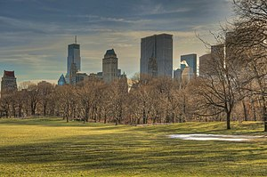 Sheep Meadow - View of empty meadow in winter