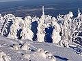 Wintereinbruch mit unheimlich viel Schnee.JPG