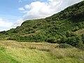 Woodland, Glen Euchar - geograph.org.uk - 529460.jpg