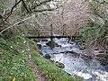 Woodland Bridge - geograph.org.uk - 2719816.jpg