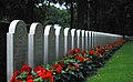 World War II Cemetery Rhenen - panoramio.jpg
