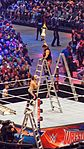 WrestleMania 32 2016-04-03 18-25-34 ILCE-6000 8908 DxO (27560746430).jpg