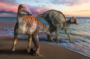 Yamatosaurus izanagii restoration.webp