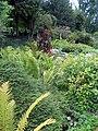 Zürich - Arboretum 20060825 007.jpg