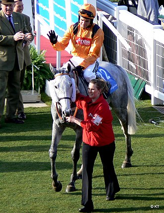 Daylami - Zaynar, by Daylami, winner of the 2009 Triumph Hurdle