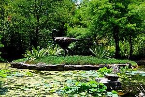 Zilker Botanical Garden - Image: Zilker Botanical Jun 2008 04