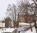 Zima 2010 01 22 1095.JPG