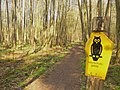 Zuelowsee - Naturschutzgebiet (Zuelow Lake Nature Reserve) - geo.hlipp.de - 35283.jpg