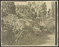 """Beacon Hill House,"" Arthur Curtiss James house, Beacon Hill Road, Newport, Rhode Island. Blue Garden, flower border LCCN2013645570.jpg"
