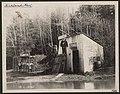 """City hall,""""jail,"" and effigies, Kirkland, Washington, 1907 (MOHAI 7077).jpg"