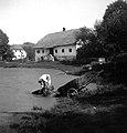 """""""Kareje"""" pere, Hrastov Dol 1950.jpg"""