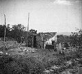 """""""Kotec"""" (svinjak) s skrilnato streho, zraven pa stranišče, spleteno iz koruzovine, oboje proč od hiše, čez vrt, Boršt 1950.jpg"""