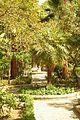 ® S.D. (ES,EN) RONDA ALAMEDA DEL TAJO VISTAS - panoramio (13).jpg