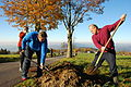 Čmelák do roku 2016 vysadil již 400 000 stromů.jpg