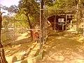 Ελάφια και Κουνέλια στη λίμνη Μπελέτσι στην Ιπποκράτειο Πολιτεία - panoramio.jpg