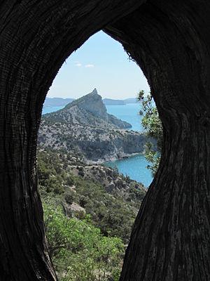 Вид з віконця.JPG