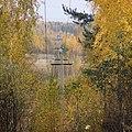 Воздушная линия у д.Нырма, Котласский район.JPG