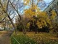 Во дворе между Ташкентской ул. и Самаркандским бульваром -20.10.2012 - panoramio.jpg