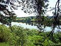 Двина - panoramio (4).jpg