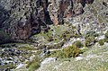 Живописная полянка - panoramio.jpg