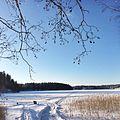 Зима на Валдае.jpg