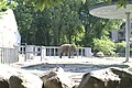 Киевский зоопарк (26).jpg