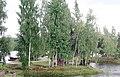 Лиепсалас (Латвия) Острова на реке Даугава - panoramio.jpg