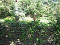 Меморіальний комплекс – садиба письменника І. П. Котляревського 1.jpg