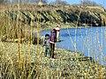 Над рікою Стрий - panoramio.jpg