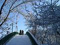 Парк 50-річчя взимку2!.JPG