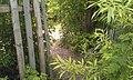 Проход в заборе в сад СНТ завода Пластмасс - Сад 1 - panoramio.jpg