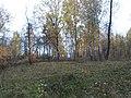 Севастопольский парк осень 2.jpg
