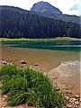Черное озеро - panoramio (13).jpg