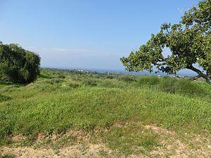 בתמונה מוצג חלק מהאזור שבו שכן הכפר אל-ג'ורה (התמונה צולמה ב-2015). האזור נראה בלתי בנוי, יש בו צמחייה עשירה והוא משקיף על הים התיכון.