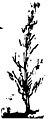 ਪੰਜਾਬੀ ਕੈਦਾ - ਚਰਨ ਪੁਆਧੀ (page 34 crop).jpg