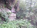 一景 - panoramio.jpg