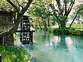 大王山葵農場 Daio Wasabi Farm - panoramio (3).jpg