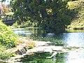 小池水源 KOIKE Spring water - panoramio (1).jpg