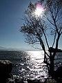 洱海畔 - panoramio.jpg