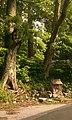 甲津原 - panoramio.jpg