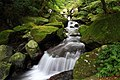 青山瀑布步道 - panoramio (1).jpg