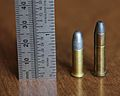 .22 Special, with .22 Long Rifle for comparison..JPG