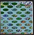 014 MALÉ LEKNÍNY-pocta Monetovi.jpg