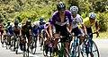 12 Etapa-Vuelta a Colombia 2018-Ciclistas en el Peloton 12.jpg
