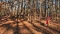 15-05-103, trail marker - panoramio.jpg